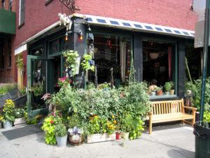 NYC's Best Foodie Neighborhoods
