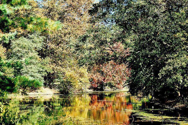 Get to Know Prospect Park