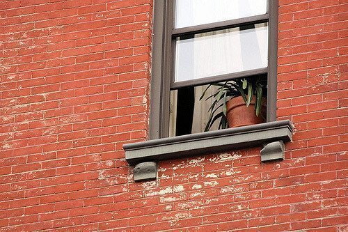 Careful! is that a Lot-line Window? Don't Expose Yourself