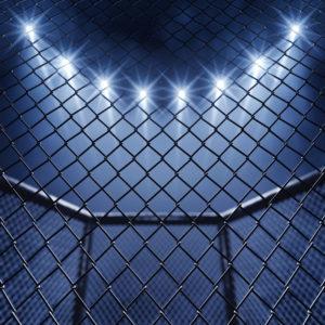 Cage Fight: Manhattan vs. Brooklyn
