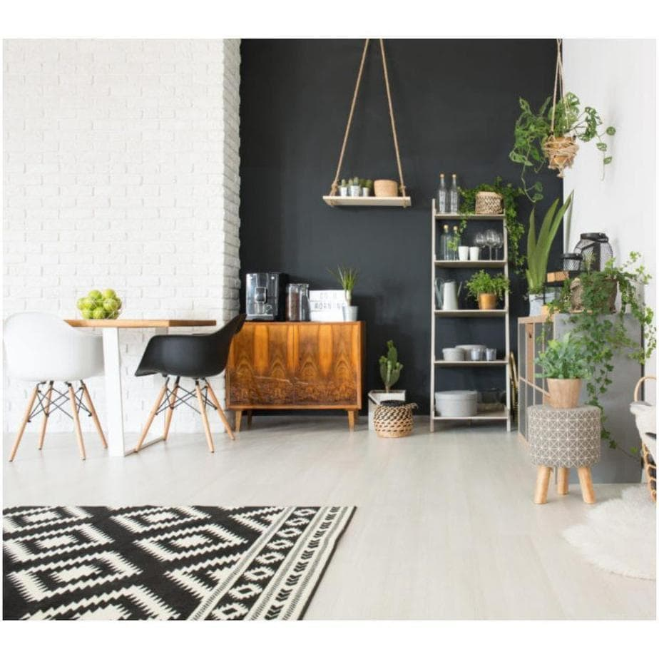 best-indoor-plants-to-purify-the-air-in-your-apartment-1024x1024